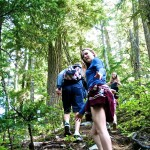 Hiking Amongst Ancient Cedars