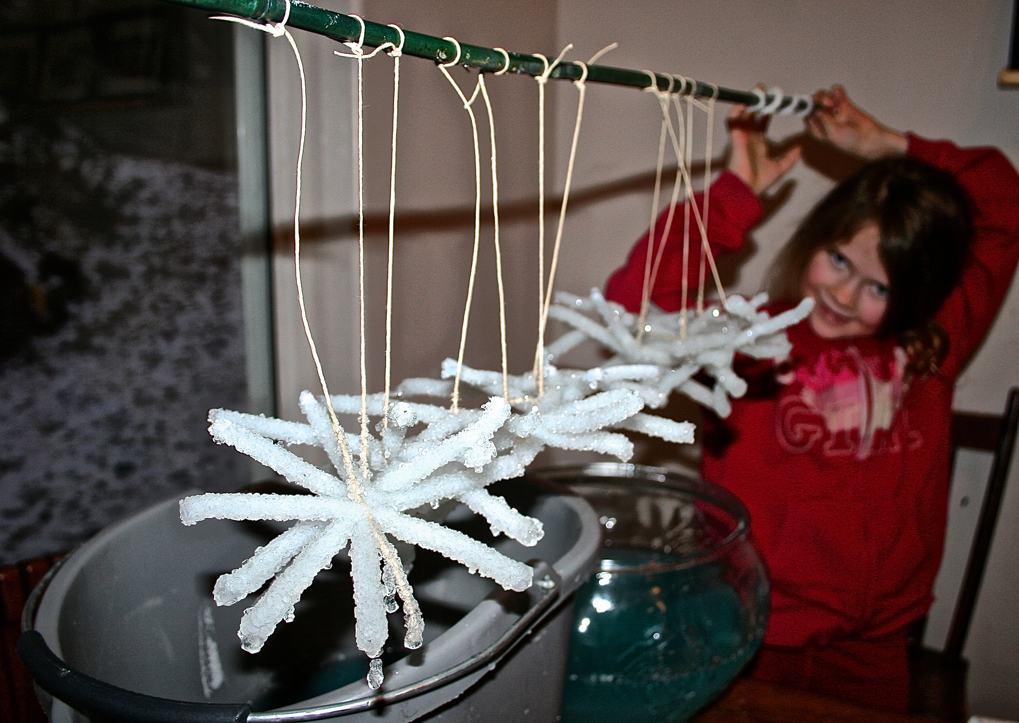 Crystal Snowflake Craft