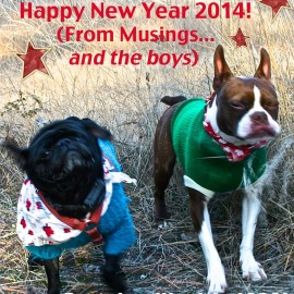 Happy New Year From Musings….& the boys!
