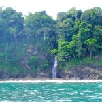 The Dolphins of Expedition Corcovado
