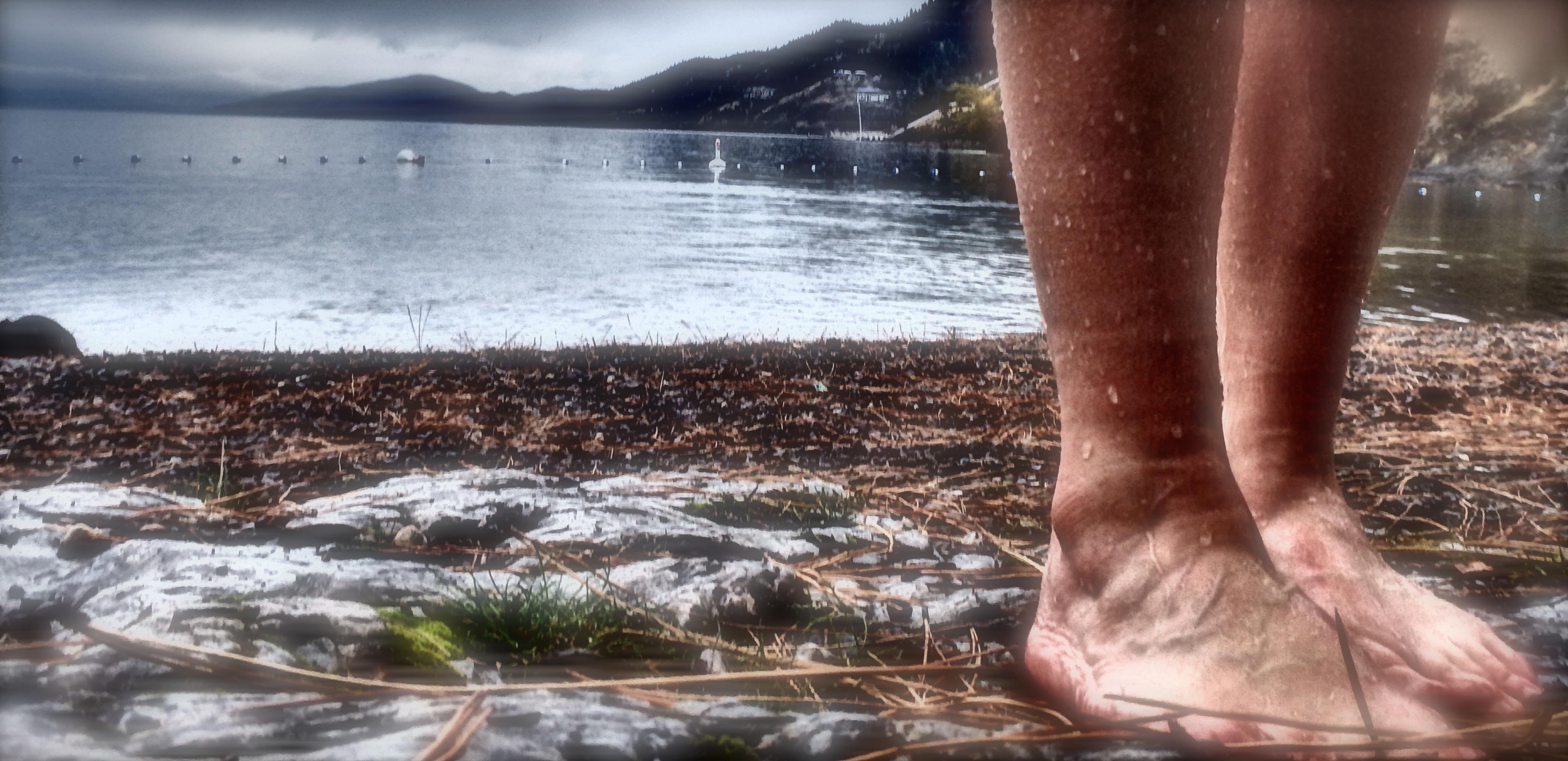 Okanagan Lake Dip Challenge