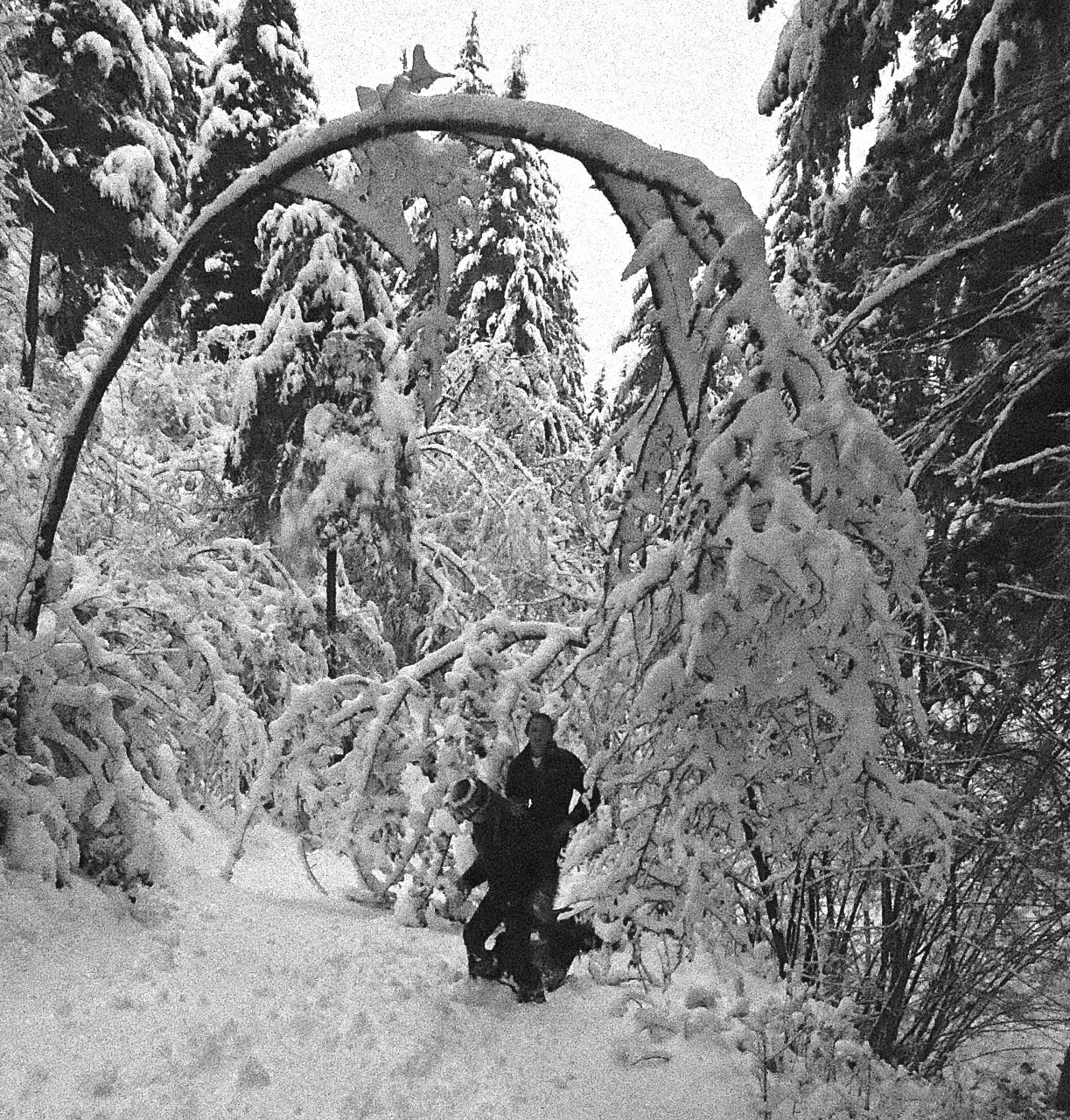 Okanagan Winter Wonderland!