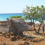 Lapakahi, Hawaii–If I Were Alive In 1315