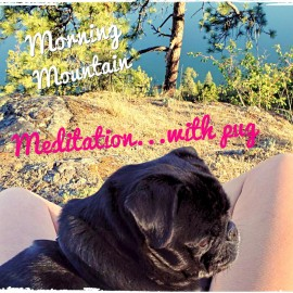 Mountain Meditation…with Pug