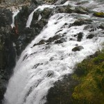 Englishman River Falls Hike, Vancouver Island