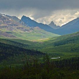 Yukon Dreaming