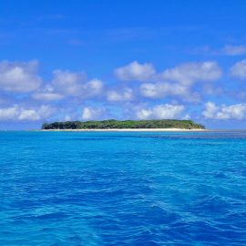 Life Down Under: Lady Musgrave Island