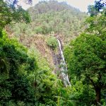 Life Down Under: Kondalilla Falls