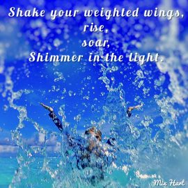 Shake Your Weighted Wings